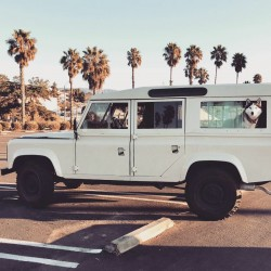 1984 Land Rover Defender 110 Country Wagon