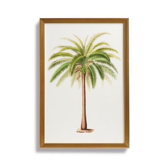 tropical-art-collection-from-the-new-york-botanical-garden-archives-giclee-prints-12-27-2016-2
