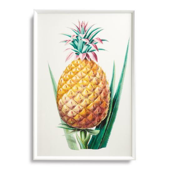 tropical-art-collection-from-the-new-york-botanical-garden-archives-giclee-prints-12-27-2016-3