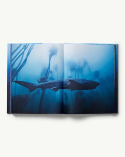 Sharks Photography Book by Michael Muller