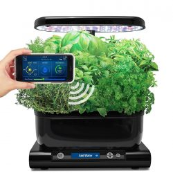 Aero Garden Harvest Wi-Fi with Gourmet Herb Seed Pod Kit