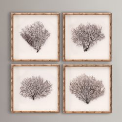 Framed Sea Fans 4-Piece Set