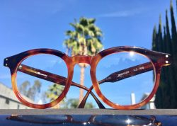 LA Eyeworks Retro Vintage Glasses